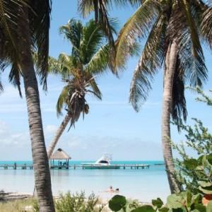 cancun fishing charters