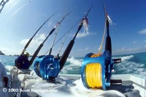sailfishing cancun